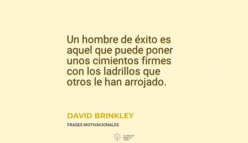 David-Brinkley-Un-hombre-de-exito-es-aquel-que-puede-poner-unos-cimientos-firmes-con-los-ladrillos-que-otros-le-han-arrojado