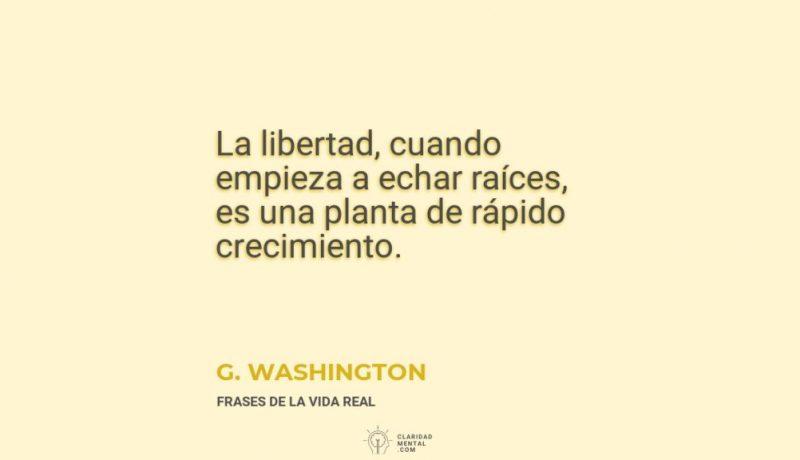 G.-Washington-La-libertad-cuando-empieza-a-echar-raices-es-una-planta-de-rapido-crecimiento