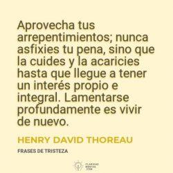 Henry-David-Thoreau-Aprovecha-tus-arrepentimientos-nunca-asfixies-tu-pena-sino-que-la-cuides-y-la-acaricies-hasta-que-llegue-a-tener-un-interes-propio