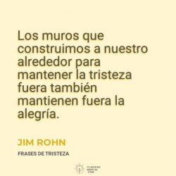 Jim-Rohn-Los-muros-que-construimos-a-nuestro-alrededor-para-mantener-la-tristeza-fuera-tambien-mantienen-fuera-la-alegria