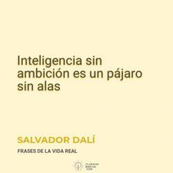 Salvador-Dali-Inteligencia-sin-ambicion-es-un-pajaro-sin-alas