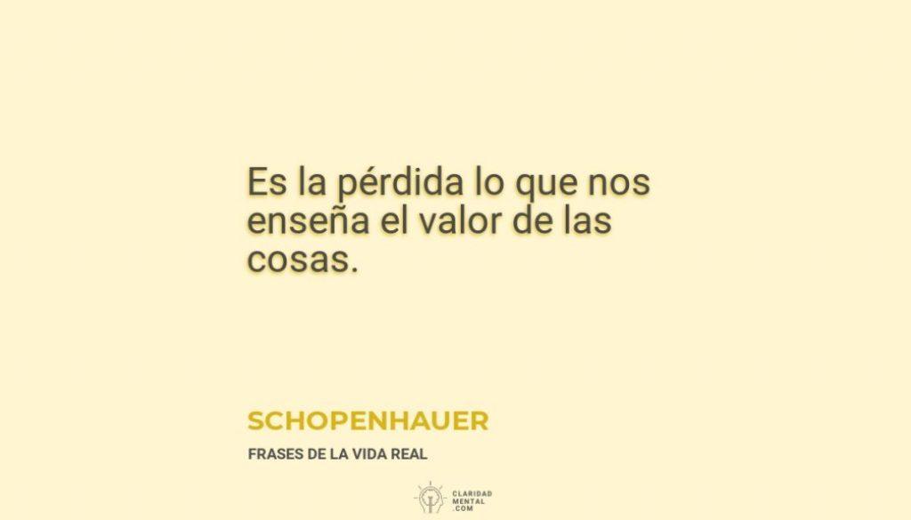 Schopenhauer-Es-la-perdida-lo-que-nos-ensena-el-valor-de-las-cosas