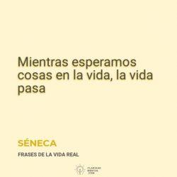Seneca-Mientras-esperamos-cosas-en-la-vida-la-vida-pasa