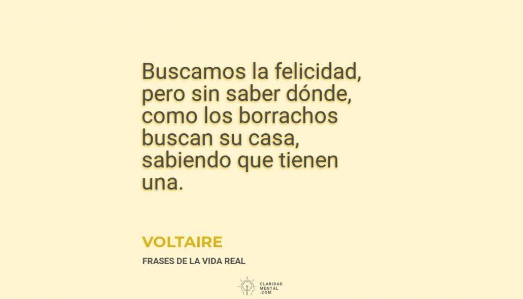 Voltaire-Buscamos-la-felicidad-pero-sin-saber-donde-como-los-borrachos-buscan-su-casa-sabiendo-que-tienen-una