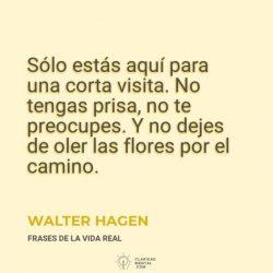 Walter-Hagen-Solo-estas-aqui-para-una-corta-visita.-No-tengas-prisa-no-te-preocupes.-Y-no-dejes-de-oler-las-flores-por-el-camino